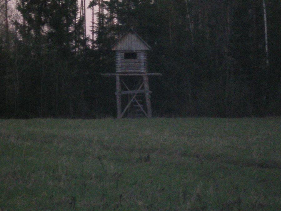 Вечер был удачным. Тяга средняя, пролетело 6 птиц, стрелял по четырем.