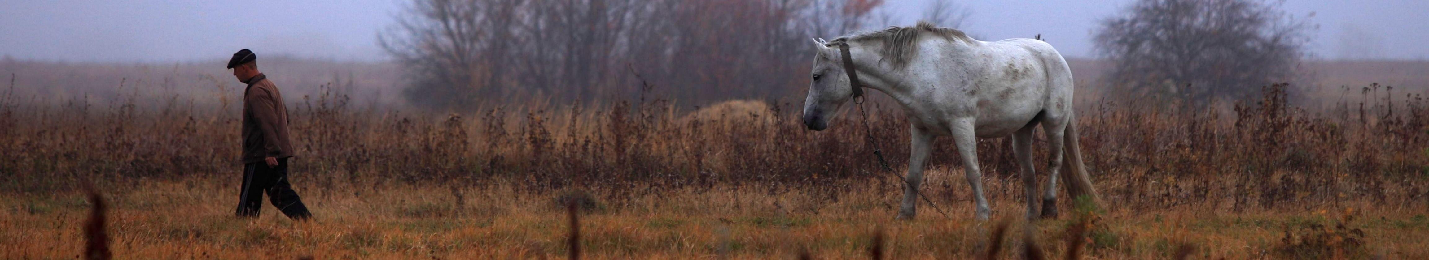 Фото к рассказу охота
