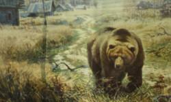 Медведь вегетарианец.