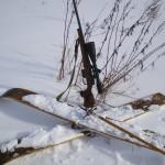 solnechnyj-fevral-oxota-dva-vystrela (15)