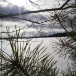 solnechnyj-fevral-oxota-dva-vystrela (17)