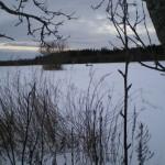 solnechnyj-fevral-oxota-dva-vystrela (18)