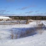 solnechnyj-fevral-oxota-dva-vystrela (2)