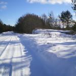solnechnyj-fevral-oxota-dva-vystrela (25)