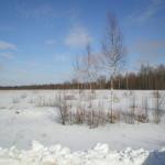 solnechnyj-fevral-oxota-dva-vystrela (31)