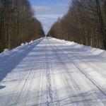 solnechnyj-fevral-oxota-dva-vystrela (32)