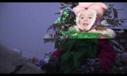 Праздник Новогодней Елки для детей и взрослых
